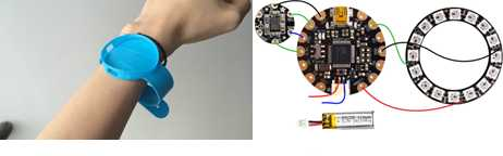 Internal Details of A Smart Wearable Device